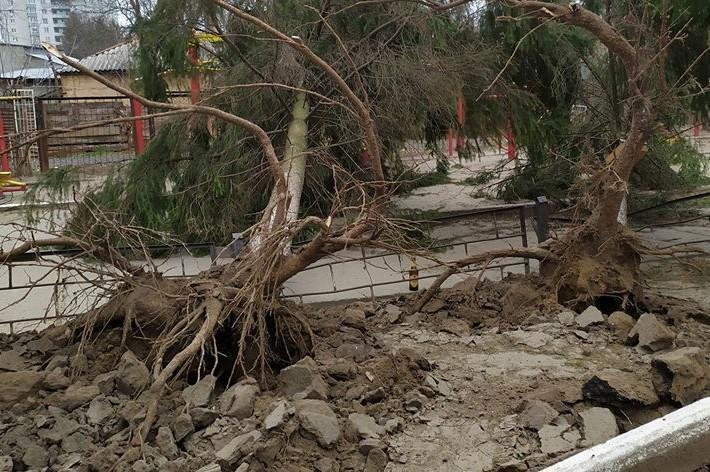 """""""Добре, що не було дітей"""": у Чернігові містом пронісся сильний ураган"""