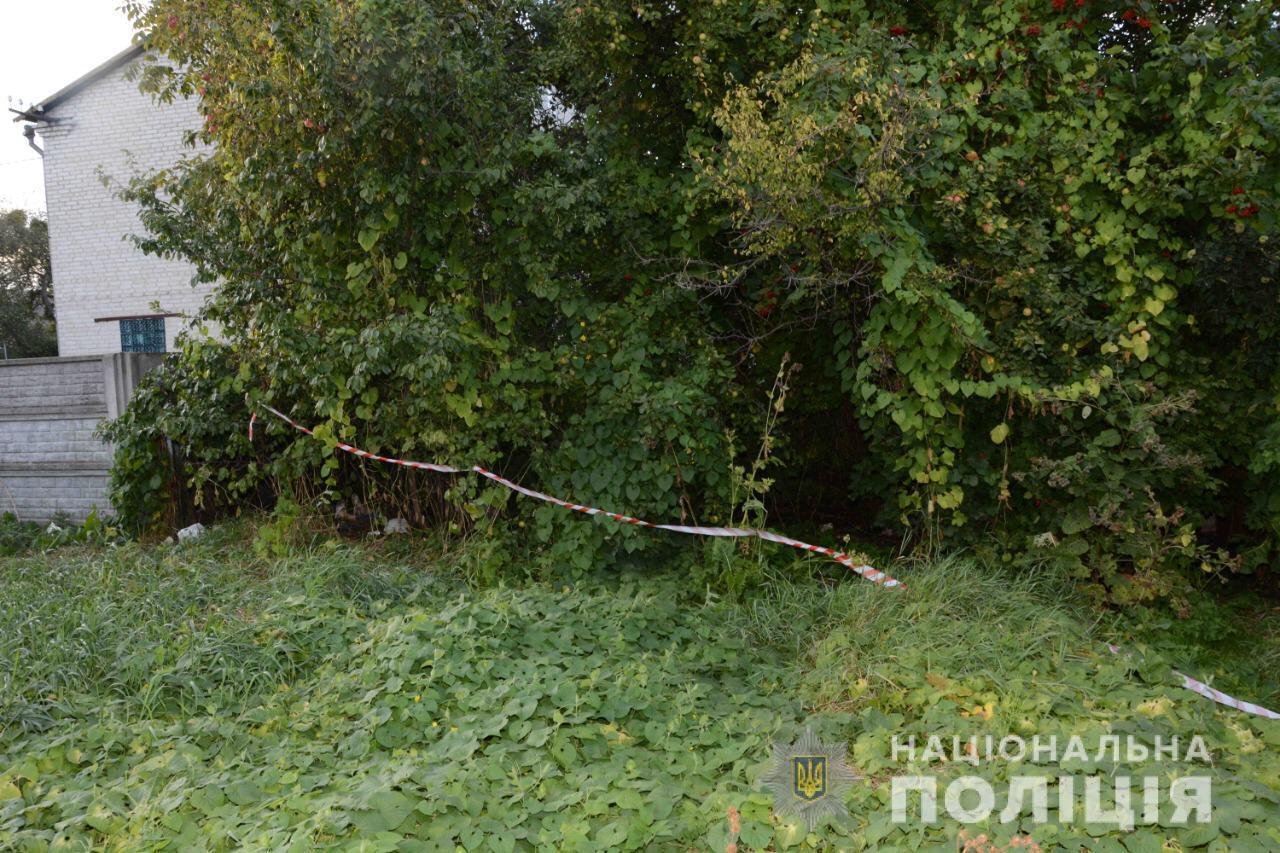 Познущався по-звірячому і кинув гнити між будинками: у Львові знайшли труп жінки в крові (фото)