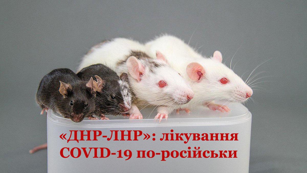 """Спецслужби РФ контролюють експерименти """"вакцинування"""" не на щурах, а на жителях ОРДЛО"""