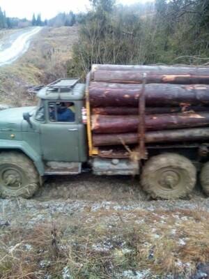 У Львівській області лісоруби побили і прив'язали до вантажівки активіста