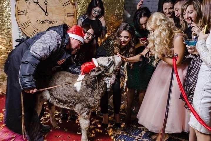 Знущання над тваринами? Відома косметична компанія втрапила в скандал (фото)